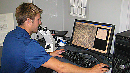 Microscopic examination with digital imaging